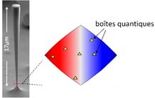 Accurate position mapping of quantum emitters embedded in a photonic device